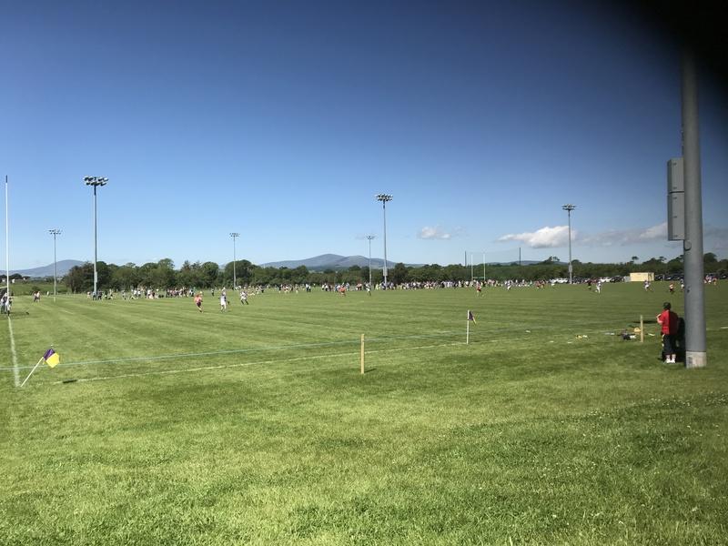 Main Club Grass Pitch