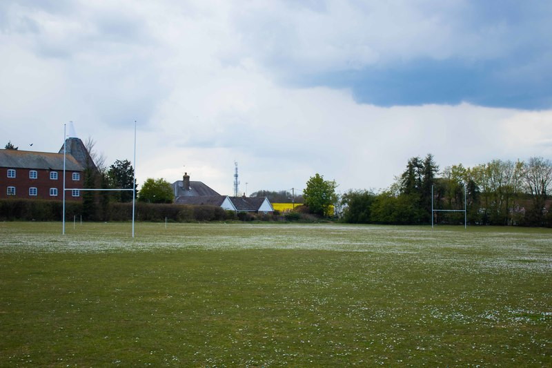 Grass Pitch Rugby